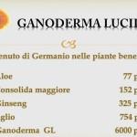 Ganoderma és a benne lévő szerves germánium,ill  más növények közti  különbsége