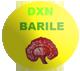 DXN Barile